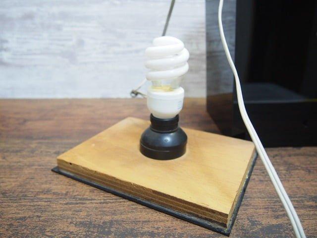 ナイト・レンジャーのランプの電球
