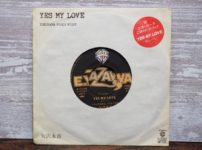 YES MY LOVE(矢沢永吉)の中古レコード)